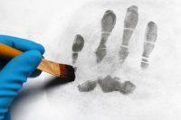criminalist taking fingerprints using a brush. Closeup.